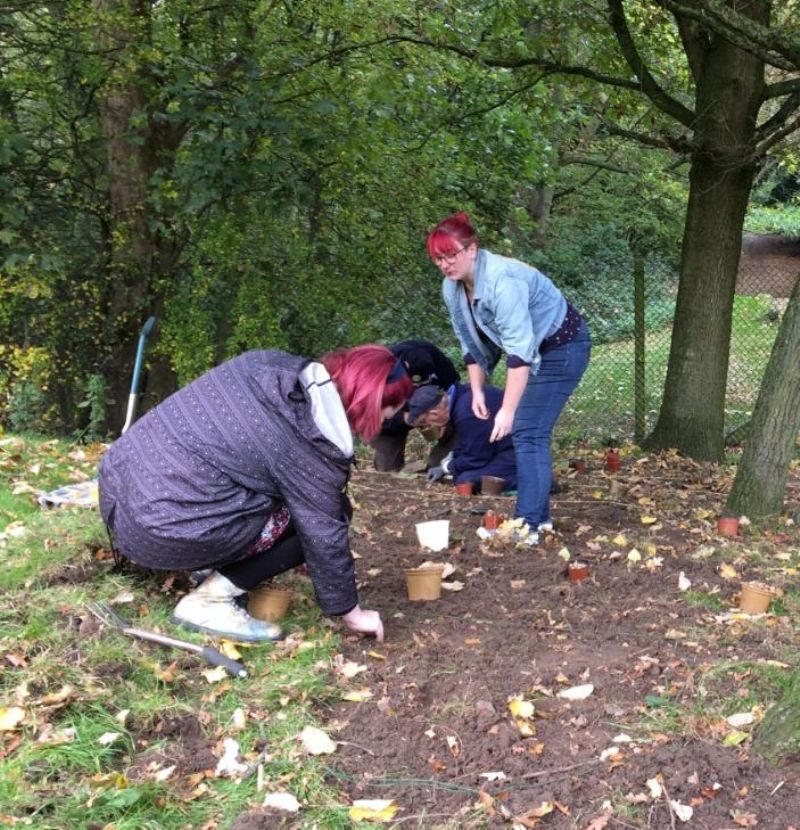 Rotarians and Friends plant Crocus Corms at Norton Priory